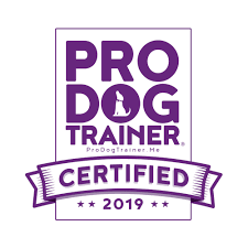 AbsoluteDogs ProDog Trainer Certification 2019